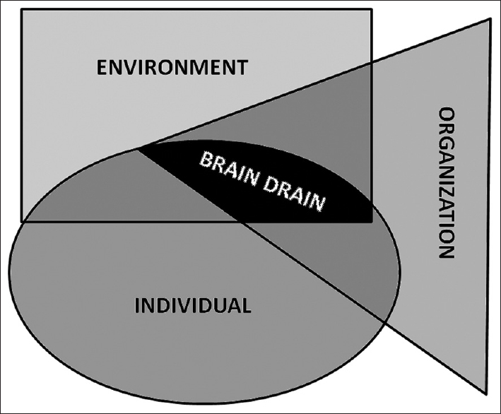 "Figure 2: Interaction between organizational, individual, and environmental factors that may lead to institutional ""brain drain"""